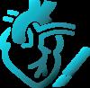 Angiología y Cirugía cardiovascular-MPS Unión Protectora